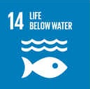 Ocean and marine conservation UN sustainable development goals 14
