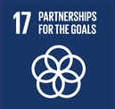 Partnerships between governments and corporations SDG 17