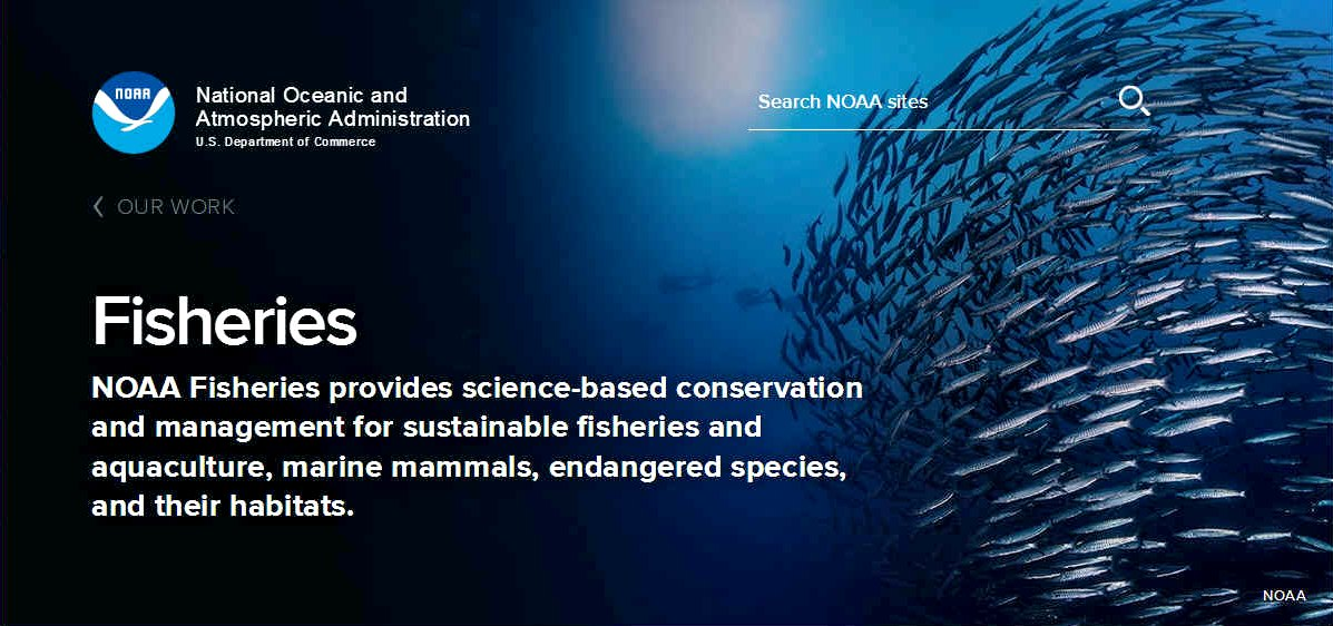 NOAA fisheries conservation and management